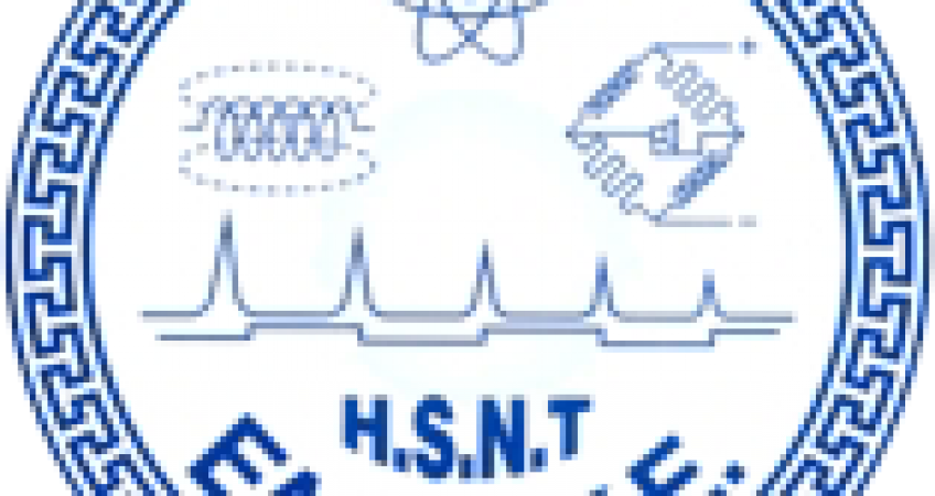 Elemke Logo